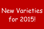 New Products for 2015 - Part 2