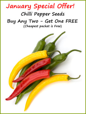 Buy Two - Get One Free on Chilli Seeds