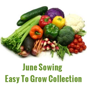 June Sowing Seeds  - Easy Grow Varieties