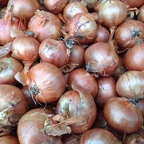 Shallot Sets Red Sun