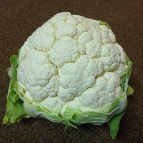 Cauliflower Optimist