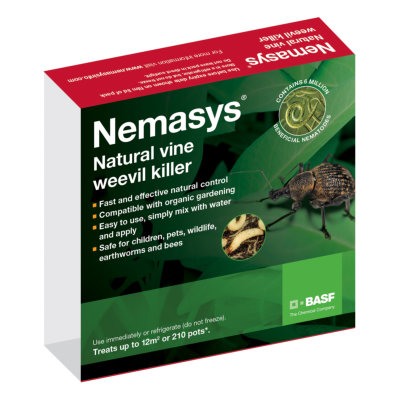 Nemasys Vine Weevil Killer Nematodes - Small Packet, 12m2
