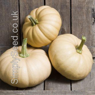 Winter Squash Autumn Crown