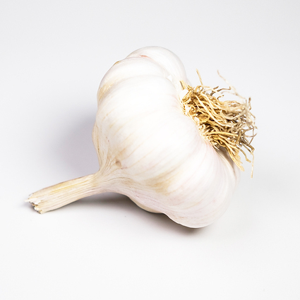 Garlic Mersley Wight