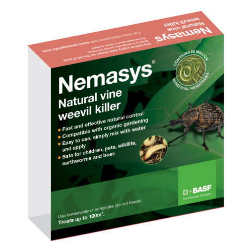 Nemasys Vine Weevil Killer Nematodes - Large Packet, 100m2
