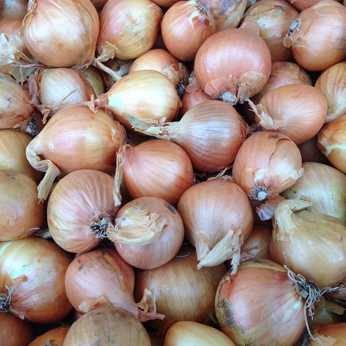 Shallot Sets Golden Gourmet